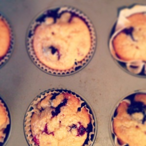 blueberry maple syrup pancake muffins